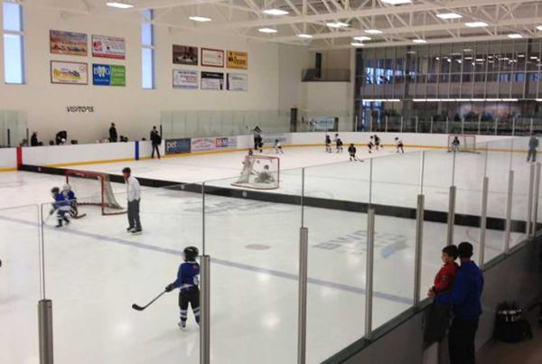 Athletica Optimizer Rink Divider